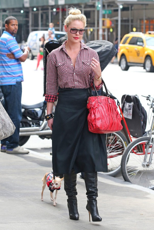 Katherine Heigl plaid button-down shirt with A-line skirt