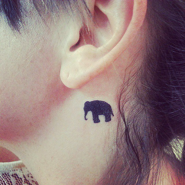 Elephant lover tattoo