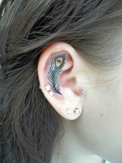 Peacock inner ear tattoo