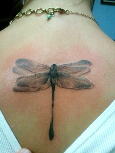 Pretty dragonfly tattoo