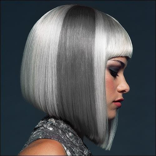 Trendy Haircuts: 7 Amazing Hairstyles for Silver Grey Hair .