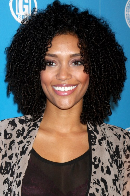 30 Picture-Perfect Black Curly Hairstyl