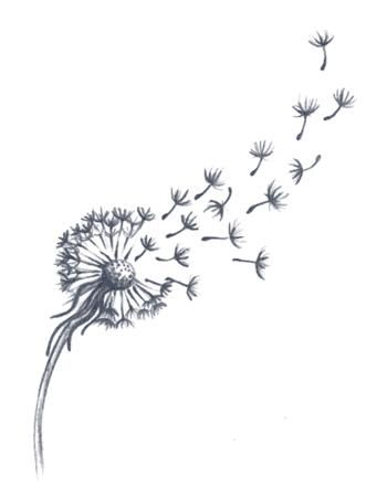 Dandelion Tattoo | Dandelion tattoo small, Dandelion tattoo design .