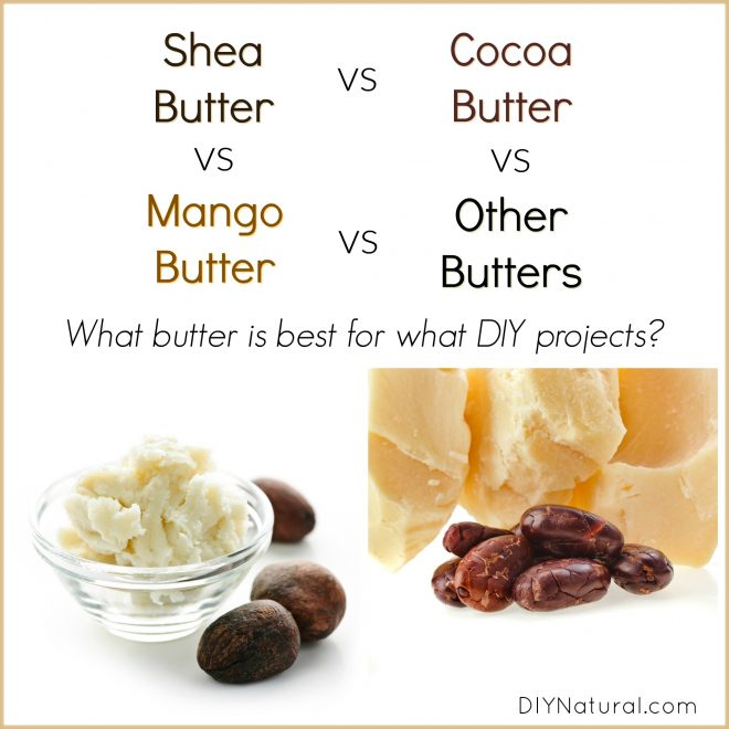 Shea Butter vs Cocoa Butter vs Mango Butter: Which is Best and Wh