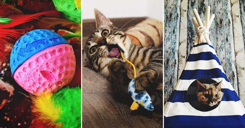 40 DIY Cat Toys Every Cat-Lover (and Their Cats) Will Ado