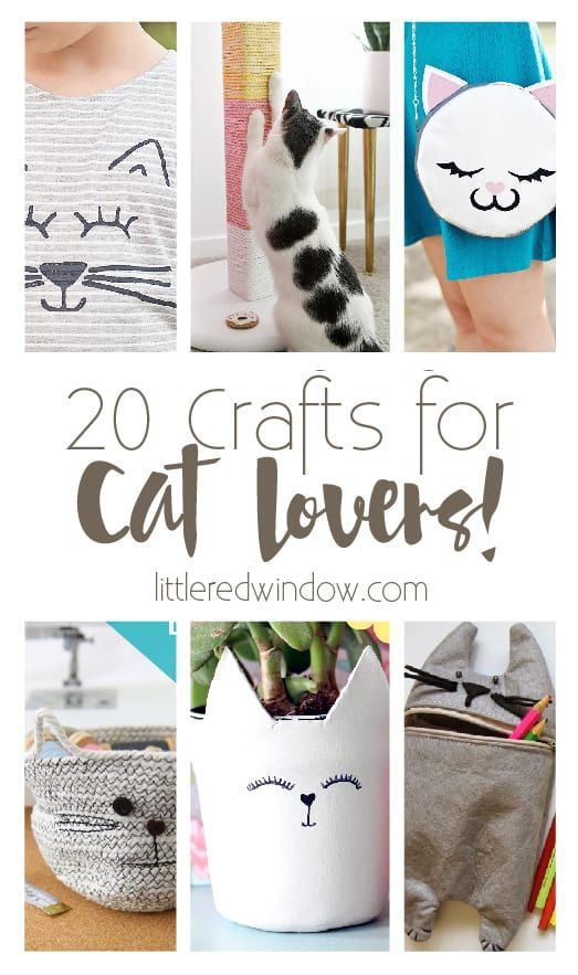 20 Crafts for Cat Lovers! | Cat lovers, Cat crafts, Craf