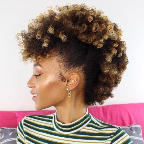 30 Best Natural Hairstyles for African American Wom