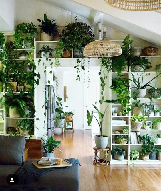 60+ Plant Stand Design Ideas for Indoor Houseplants | Decor, Room .