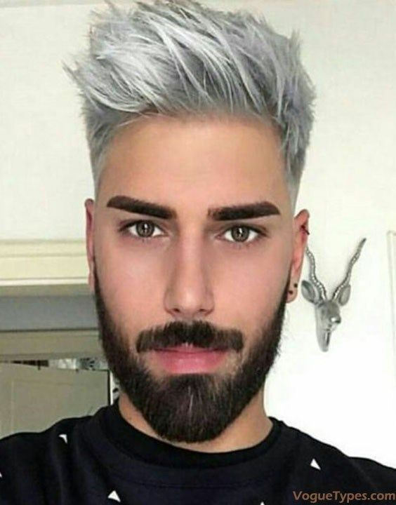 Fresh Looks of Men's Silver Hairstyle & Haircuts for 2018 | Grey .