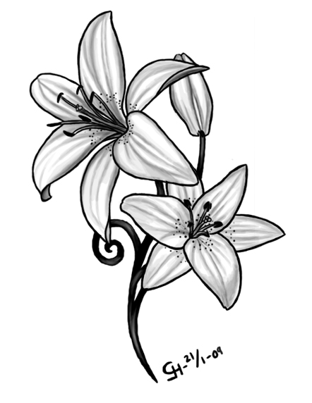 Image result for tiger lily tattoo delicate … | Lily flower .