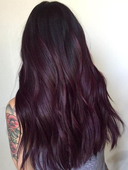 Deep Violet Plum Hair Color Trends for 2018 Women's .