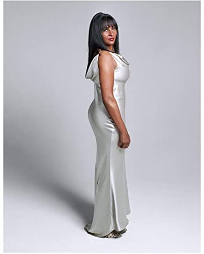 The L Word Pam Grier as Kit Porter in Silky Evening Wear Full Body .
