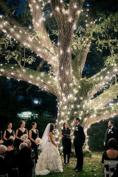 10 Bright Starry, Starry Night Wedding Theme | Wedding lights .