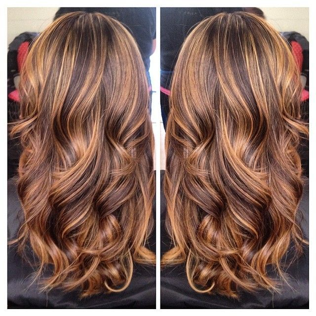 Astounding 65 Tiger Eye Hair Color Inspirations https .