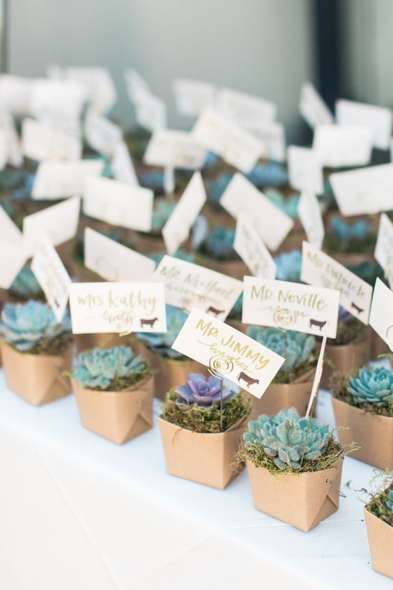 Unique Wedding Favours Ideas that will WOW your Guests | Wedding .